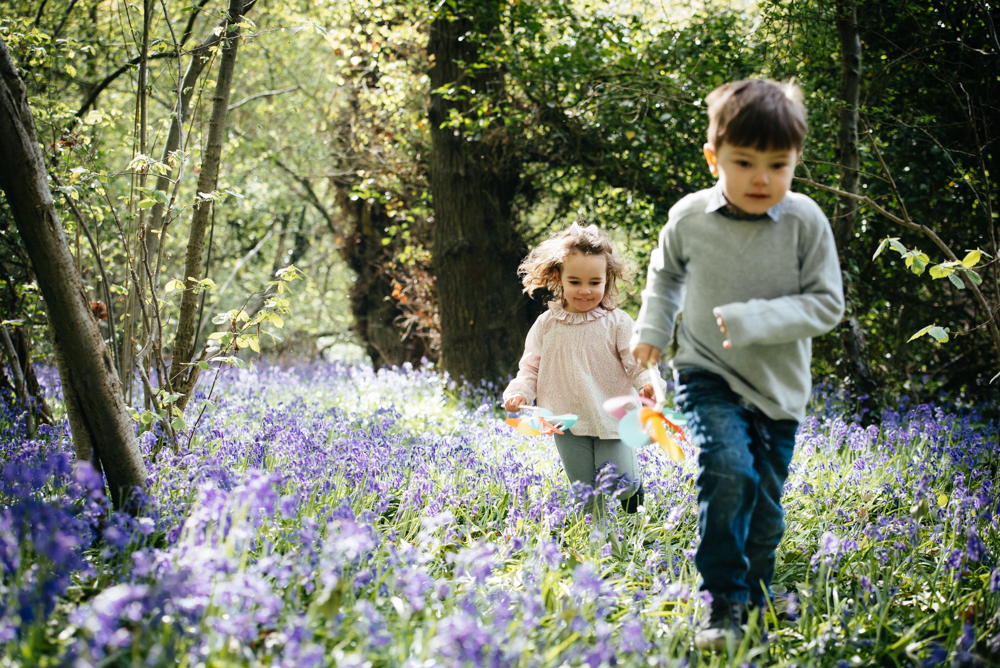 The magic of spring and Bluebells